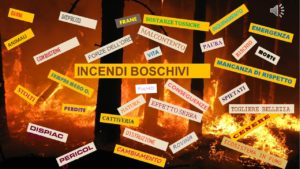 INCENDI BOSCHIVI 3E brainstorming